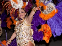 111-carnaval-2010-cehegin