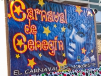 carnaval-2012-desfile-infantil-562