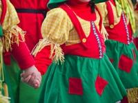 carnaval-2012-desfile-infantil-592