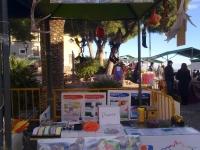 mercadillo-enero-2011-236