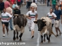 San Zenón Encierro Vaquillas