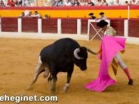 toros-domingo-06