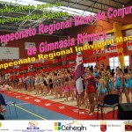 Cartel Regional Gimnasia Rítmica