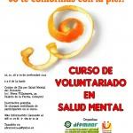 Cartel curso voluntariado