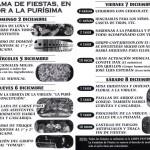 Programa fiestas El Campillo
