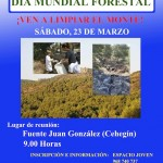 DMF - Jornada voluntariado