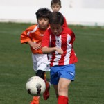 Más de 300 niños participan en el VI Torneo de Fútbol 8 'Ciudad de Cehegín