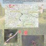 Como llegar dia mundial aves Coto Real