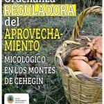 2013-09-30 cartel micologico2b - propuesta 2 - aprobada copia