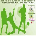 Liga local 2014