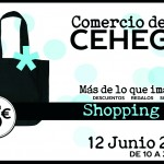 FLYER_SHOPPINGDAY_CEHEGIN_2015 copia